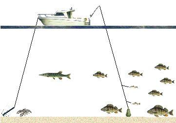 La pêche à mourmanske sur le lac
