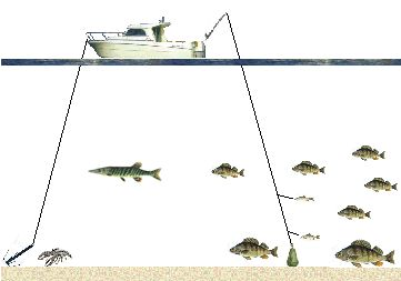 Sept lacs la pêche payante